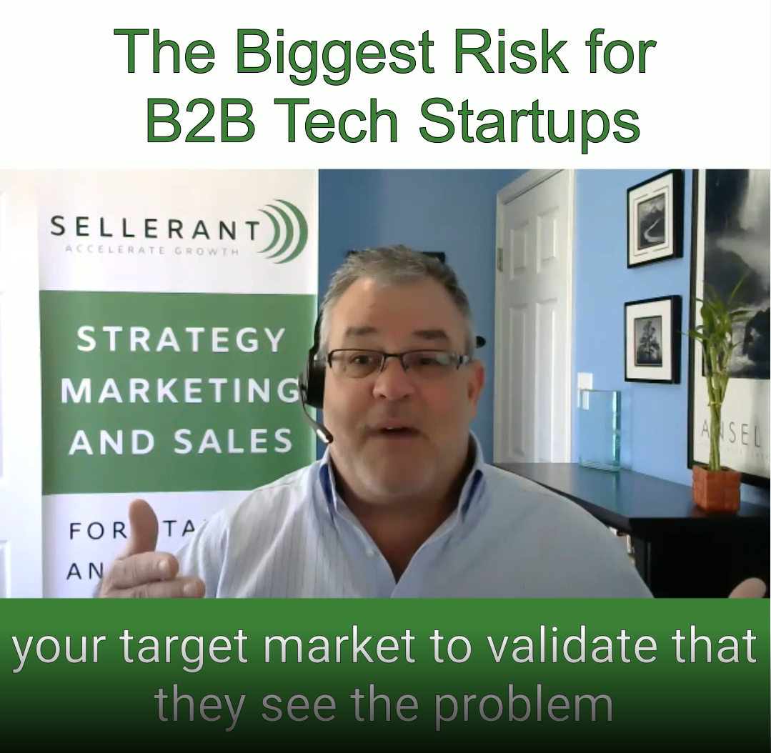 B2B Startup Risk